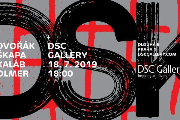 DSK v DSC Gallery