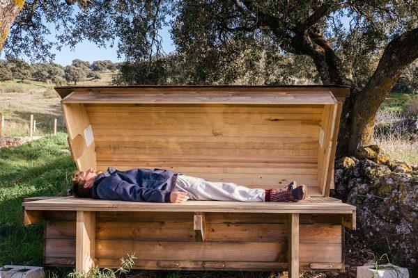 Včelí meditace