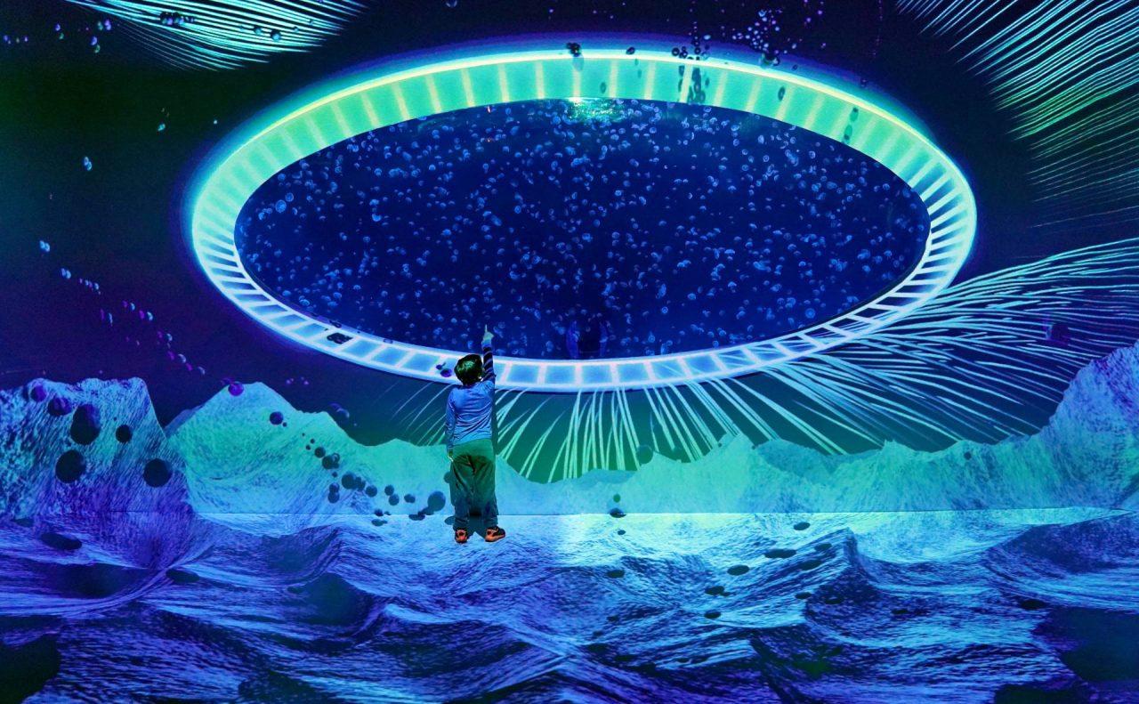 medúzárium